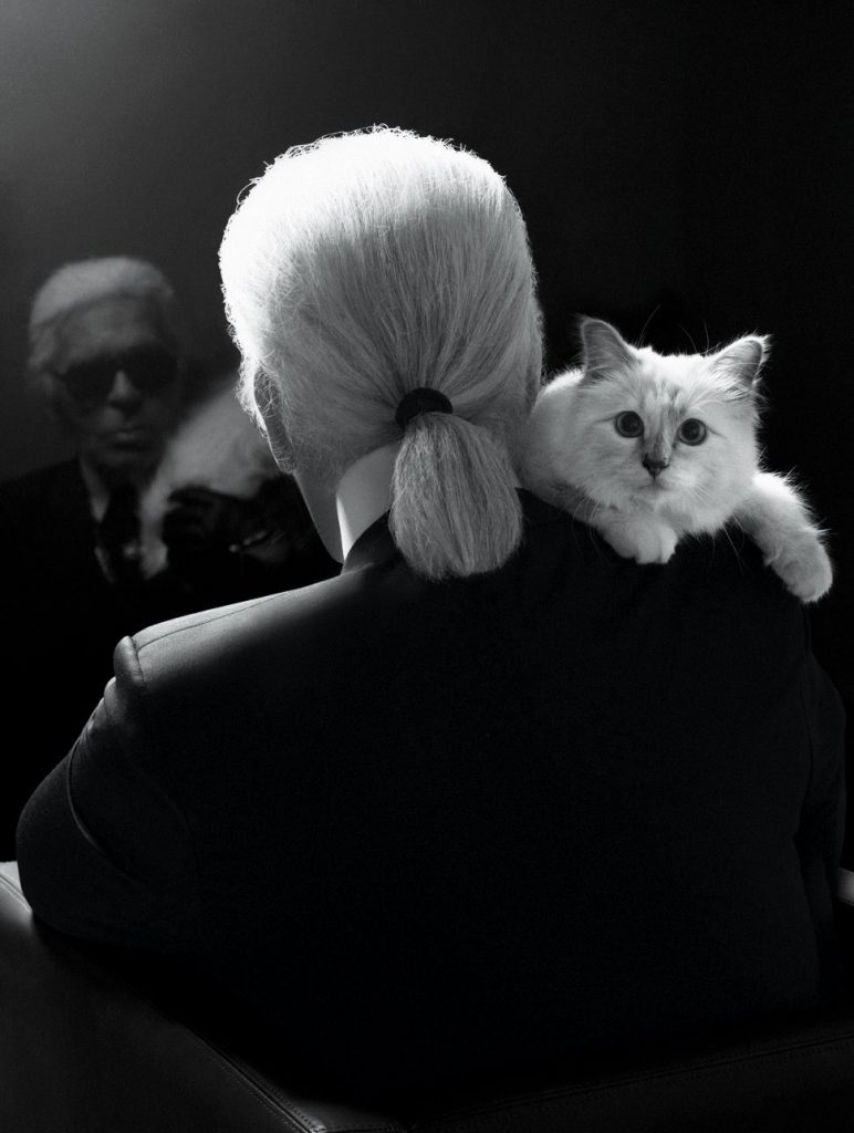 Choupette Lagerfeld, with the late Karl Lagerfeld; c/o Karl Lagerfeld